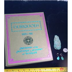 Turquoise Book, Stone, and Earrings
