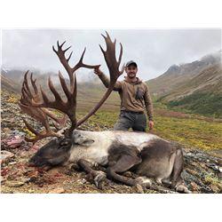 Alaska: Governors SC827 Central Alaska Range Caribou (same as DC827) Permit for 1 Hunter.
