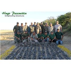 Argentina: 4 Day 6 Night High Volume Dove Hunt for 4 Hunters