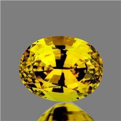 Natural Brilliant Golden Yellow Zircon [Flawless-VVS]