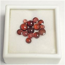 Genuine Assorted Garnet(6ct) , Made in Canada, Suggested Retail Value $200