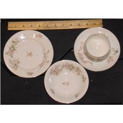 Antique MZ Austria rare BRIDAL ROSE PORCELAIN TEA SET For 6+ Petits gâteaux Plates Cups Dessert