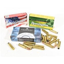 308Win Ammunition and Brass