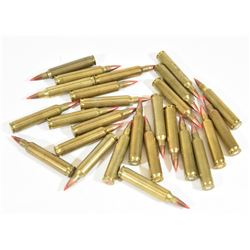 26 Rounds 204Ruger Hornady and Win Mixed Ammo