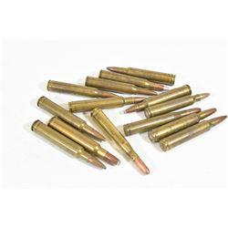 14 Rounds 300 Magnum Ammo