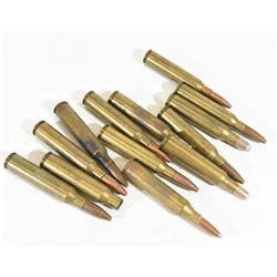 12 Rounds 30 Newton Ammo