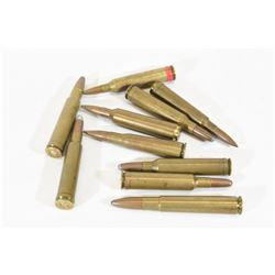 Assorted Magnum Rounds
