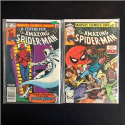 THE AMAZING SPIDER-MAN COMIC BOOK LOT #220/ #206 (MARVEL COMICS)
