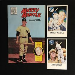 MICKEY MANTLE COLLECTIBLES LOT