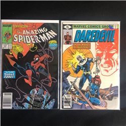 MARVEL COMICS BOOK LOT (THE AMAZING SPIDER-MAN #310/ DAREDEVIL #160)