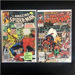 THE AMAZING SPIDER-MAN COMIC BOOK LOT #246/ #314 (MARVEL COMICS)