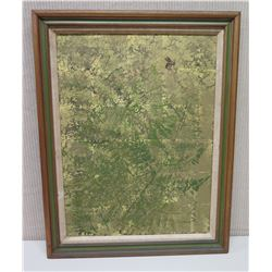 "Framed Art on Canvas: ""Woodhouse Fern"", 22x28, Signed Charles Armour Robinson '73"