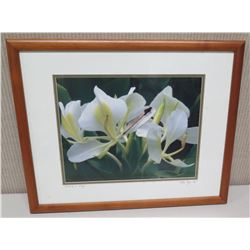 """Framed Photographic Image - """"Damselfly on White Ginger"""" 21.5x18, Artist Signed Nathan Yuen '04"""