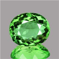 Natural  AAA Green Tsavorite Garnet {VVS}