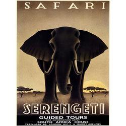 Steve Forney - Safari Serengeti