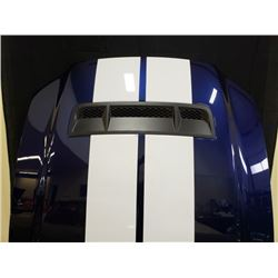 2010 SHELBY GT500 HOOD NO RESERVE