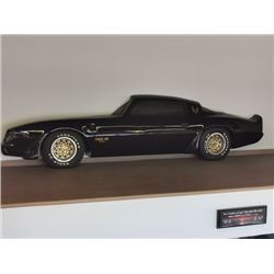 CUSTOM FIBERGLASS TRANS AM FULL SIZE WALL ART