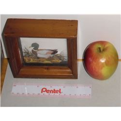 Old small framed high-relief duck for cottage, home, cabine - canard haut-relief avec petit cadre