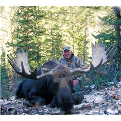 2021 Utah Wasatch Mtns/Central Mtns Bull Moose Conservation Permit