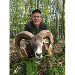 5-Day European Mouflon Sheep Hunt for One (1) Hunter and One (1) Non-Hunter