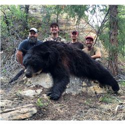 2021 Central Mtns, Manti-South/San Rafael, North Black Bear Conservation Permit Multi-season