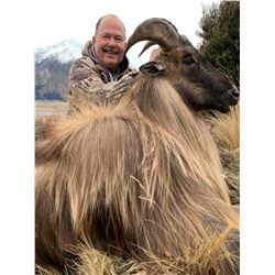 5-Day Bull Tahr Hunt for One (1) Hunter in New Zealand