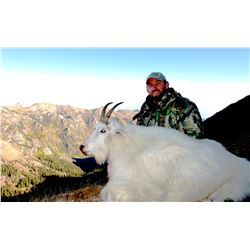 2021 Utah North Slope/South Slope, High Uintas Central Mountain Goat Conservation Permit, Any Legal