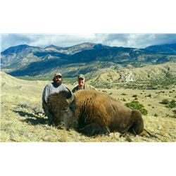 2021 Utah Henry Mtns Bison Conservation Permit, Hunter's Choice (Early), Any Legal Weapon (Rifle)