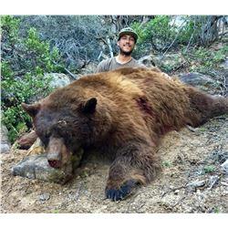 2021 Chalk Creek/Kamas/North Slope, Summit Black Bear Conservation Permit Multi-season
