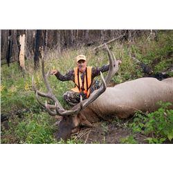 2021 Utah Central Mtns. Manti Bull Elk Conservation Permit - Multi-Season