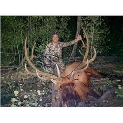 2021 Utah Mt. Dutton, Bull Elk Conservation Permit, Multi Season