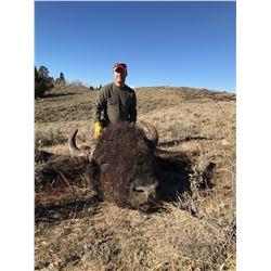 2021 Wyoming Bison License