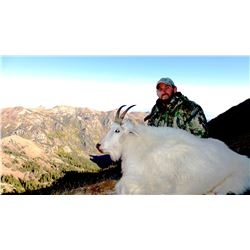 2021 Utah Mountain Goat Conservation Permit – Beaver (Early)