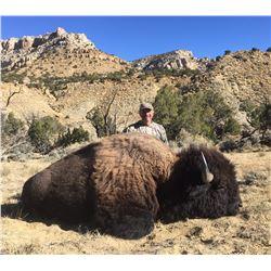 2021 Utah Statewide Bison Conservation Permit