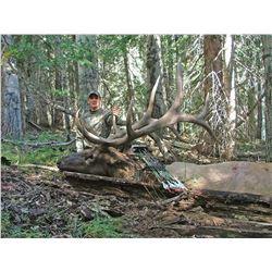 2021 Utah San Juan Bull Elk Conservation Permit, Multi-season