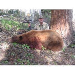 2021 Utah La Sal Mtns. Black Bear Conservation Permit - Multi-Season