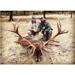 4-Day Hunt in Spain for Two (2) Hunters for Two (2) Iberian Red Deer