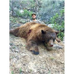2021 Utah San Juan Black Bear Conservation Permit, Multi-season