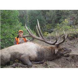 2021 Utah Fillmore, Pahvant Bull Elk Conservation Permit - Any Weapon Permit
