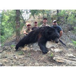 2021 Utah Wasatch Mtns., West-Central Black Bear Conservation Permit - Multi-Season
