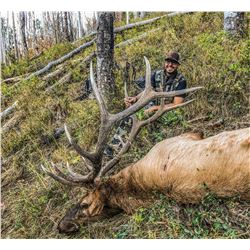 2021 Utah Beaver, East Bull Elk Conservation Permit Any Legal Weapon (Rifle)