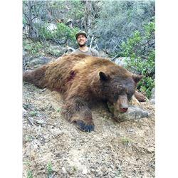 2021 Utah Central Mtns., Manti-South/San Rafael North Black Bear Conservation Permit - Multi-Season