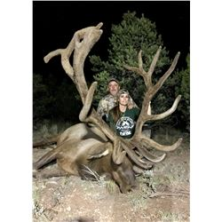 Arizona Game and Fish Commissioners Special Elk Tag