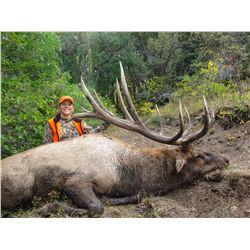 2021 Utah Fillmore, Pahvant Bull Elk Landowner Permit