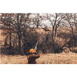 HERITAGE 1865: 2-Day/3-Night Premium Upland Bird Hunt for Two Hunters in Iowa