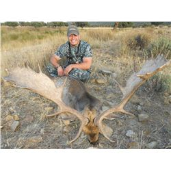 CAZATUR SPAIN: 4-Day Spanish Red Deer or Fallow Deer Hunt for Two Hunters in Spain - Includes Trophy