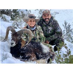 TROPHY HUNT SPAIN: 4-Day Iberian Mouflon Sheep Hunt for One Hunter and One Non-Hunter in Spain - Inc
