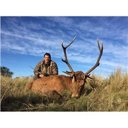 CAZAPAMPA: 4-Day Red Stag Hunt for Two Hunters in Argentina - Includes Trophy Fees