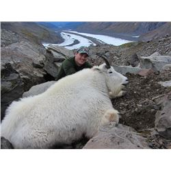 FEJES GUIDE SVC: 10-Day Mountain Goat and Black Bear Hunt for One Hunter in Alaska - Includes Trophy