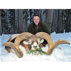 HUNTING IN AUSTRIA: 5-Day European Mouflon Hunt for Two Hunters and Two Non-Hunters in Austria - Inc